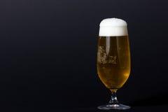 Μια τέλεια κρύα μπύρα Στοκ φωτογραφία με δικαίωμα ελεύθερης χρήσης