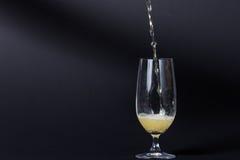 Μια τέλεια κρύα μπύρα Στοκ Εικόνες