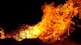 Μια τεράστια φλόγα στην ακτή Μαύρης Θάλασσας βαθιά τη νύχτα στην slo-Mo απόθεμα βίντεο