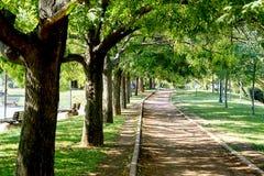 Μια τρέχοντας διαδρομή σε ένα πάρκο στοκ εικόνα με δικαίωμα ελεύθερης χρήσης