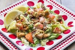 Μια υγιής σαλάτα Caesar αστακών Στοκ φωτογραφία με δικαίωμα ελεύθερης χρήσης