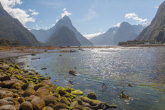 Μια φυσική άποψη του ήχου Milford διαδρομή της Νέας Ζηλανδίας †στη «Milford - συνδέστε λοξά την αιχμή Στοκ Εικόνα