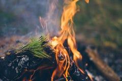 Μια φωτεινή θερμή φωτιά στρατοπέδευσης στοκ φωτογραφία με δικαίωμα ελεύθερης χρήσης