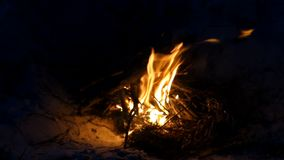 Μια φωτεινή πυρκαγιά στην ακτή Μαύρης Θάλασσας βαθιά τη νύχτα απόθεμα βίντεο