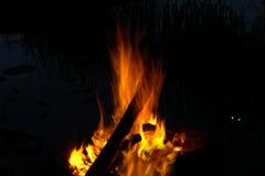 Μια φωτιά στη νύχτα Στοκ εικόνες με δικαίωμα ελεύθερης χρήσης