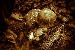 Μια φωτογραφία ενός κοριτσιού σεπιών αγγίζει τη γη φθινοπώρου, ξηρά χλόη στο δάσος στοκ εικόνες με δικαίωμα ελεύθερης χρήσης