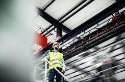 Μια χαμηλή άποψη γωνίας ενός βιομηχανικού μηχανικού ατόμων που στέκεται σε ένα εργοστάσιο στοκ εικόνες