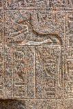 Μια χαραγμένη ανακούφιση του κυνοειδούς Θεού Anubis στη Μέμφιδα στην Αίγυπτο Στοκ φωτογραφία με δικαίωμα ελεύθερης χρήσης