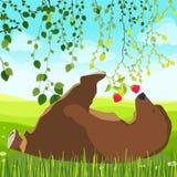 Μια χαριτωμένη αρκούδα μυρίζει ένα λουλούδι στοκ εικόνες