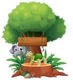 Μια χελώνα και ένας ελέφαντας κάτω από το μεγάλο δέντρο με ένα ξύλινο signbo απεικόνιση αποθεμάτων
