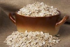 Μια χούφτα oatmeal Στοκ φωτογραφία με δικαίωμα ελεύθερης χρήσης