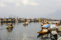 Μια όμορφη βάρκα που χρησιμοποιεί στη λίμνη Κασμίρ Ινδία DAL κατά τη διάρκεια του wiinter στοκ εικόνες με δικαίωμα ελεύθερης χρήσης