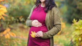 Μια όμορφη νέα έγκυος γυναίκα κρατά ένα κίτρινο φύλλο σφενδάμου στοκ εικόνα
