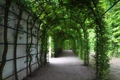 Μια όμορφη πράσινη πέργκολα στο Rose Garden Στοκ φωτογραφία με δικαίωμα ελεύθερης χρήσης