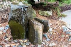 Μια δύσκολη βράζοντας πηγή νερού σε έναν κήπο προαυλίων Στοκ εικόνες με δικαίωμα ελεύθερης χρήσης
