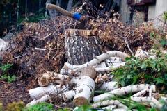 Μια ώθηση τσεκουριών σε ένα ξύλινο κούτσουρο Στοκ φωτογραφίες με δικαίωμα ελεύθερης χρήσης