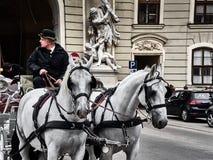 Μια horse-drawn μεταφορά που περνά μέσα στην οδό παλατιών Hofburg στοκ εικόνα