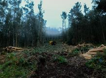 Μια misty ημέρα στα βουνά - Cedeira Στοκ εικόνα με δικαίωμα ελεύθερης χρήσης