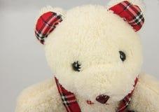 Μια teddy αρκούδα στο γκρίζο υπόβαθρο Στοκ Φωτογραφίες