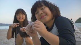 Μικρά ασιατικά παιδιά που επιλέγουν τα κοχύλια στην παραλία απόθεμα βίντεο