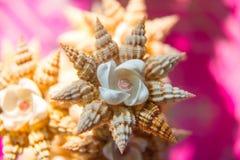 Μικρά ασυνήθιστα προϊόντα από τα φυσικά θαλασσινά κοχύλια Στοκ φωτογραφία με δικαίωμα ελεύθερης χρήσης