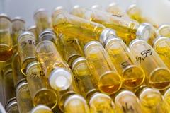 Μικρά εργαστηριακά μπουκάλια Στοκ εικόνα με δικαίωμα ελεύθερης χρήσης