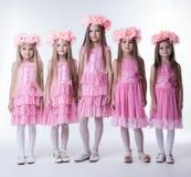 Μικρά κορίτσια στα ρόδινα φορέματα και τα στεφάνια γοητείας στοκ φωτογραφίες