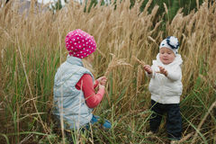 Μικρά κορίτσια στο υψηλό πορτρέτο χλόης Στοκ φωτογραφία με δικαίωμα ελεύθερης χρήσης