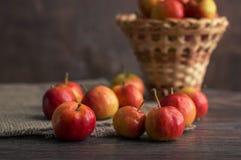 Μικρά κόκκινα μήλα Ranetki σε έναν ξύλινο πίνακα με ένα ψάθινο καλάθι Ακόμα ζωή με τα μήλα Στοκ Εικόνες