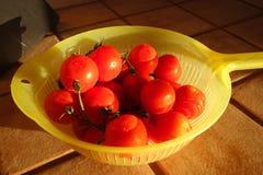 Μικρά κόκκινα tomaotes Στοκ εικόνες με δικαίωμα ελεύθερης χρήσης