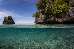 Μικρά νησιά ψαριών και ασβεστόλιθων στοκ εικόνες