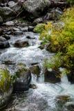 Μικρά ορμητικά σημεία ποταμού κατά μήκος του ποταμού Yellowstone Στοκ φωτογραφία με δικαίωμα ελεύθερης χρήσης