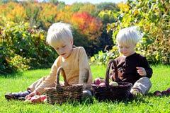 Μικρά παιδιά που έχουν το πικ-νίκ φρούτων στον οπωρώνα της Apple Στοκ φωτογραφία με δικαίωμα ελεύθερης χρήσης