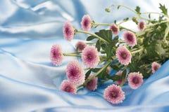 Μικρά πορφυρά λουλούδια στο μπλε σατέν ουρανού Στοκ φωτογραφίες με δικαίωμα ελεύθερης χρήσης