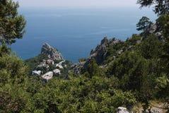 Μικρά πράσινα δέντρα στο υπόβαθρο της απεριόριστης Μαύρης Θάλασσας και των απότομων απότομων βράχων Στοκ Φωτογραφίες