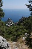 Μικρά πράσινα δέντρα στο υπόβαθρο της απεριόριστης Μαύρης Θάλασσας και των απότομων απότομων βράχων Στοκ Εικόνα