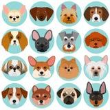 Μικρά πρόσωπα σκυλιών που τίθενται με τον κύκλο ελεύθερη απεικόνιση δικαιώματος