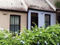 Μικρά σπίτια πεζουλιών, Σίδνεϊ, Αυστραλία Στοκ Φωτογραφία