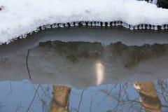 Μικρά στρογγυλά παγάκια πέρα από το νερό Στοκ εικόνα με δικαίωμα ελεύθερης χρήσης