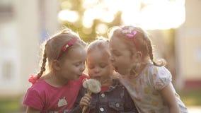 Μικρά χαριτωμένα κορίτσια με τις πλεξούδες που παίζουν έξω από κοινού απόθεμα βίντεο