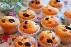 Μικρά muffins σταφίδων στοκ φωτογραφία με δικαίωμα ελεύθερης χρήσης