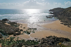 μικρά surfers minou στοκ εικόνες με δικαίωμα ελεύθερης χρήσης
