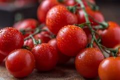 Μικρές κόκκινες ντομάτες κερασιών στο αγροτικό υπόβαθρο Ντομάτες κερασιών στην άμπελο Στοκ Εικόνες