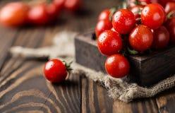 Μικρές κόκκινες ντομάτες κερασιών στο αγροτικό υπόβαθρο Ντομάτες κερασιών στην άμπελο Στοκ Φωτογραφίες