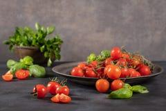 Μικρές κόκκινες ντομάτες κερασιών στο αγροτικό υπόβαθρο Ντομάτες κερασιών Στοκ φωτογραφίες με δικαίωμα ελεύθερης χρήσης