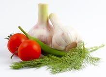 Μικρές κόκκινες ντομάτες, πράσινο πιπέρι, νέο σκόρδο, άνηθος Στοκ Εικόνα