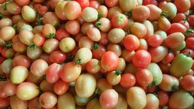 Μικρές ντομάτες στη φυτική αγορά Στοκ Φωτογραφίες