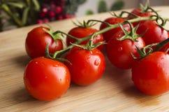 Μικρές ντομάτες Στοκ Εικόνα