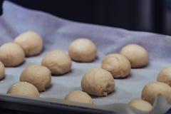 Μικρές σφαίρες ζύμης ψωμιού που τοποθετούνται στο μαγείρεμα του εγγράφου για το τηγάνι - έτοιμο να ψηθεί, σύνολο κουζινών στοκ φωτογραφία