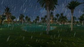 Μικρή ήρεμη λίμνη μεταξύ των δέντρων φοινικών στη βροχή απόθεμα βίντεο